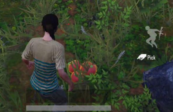 PUBG Mobile Jungle Adventure Mode jungle fruits