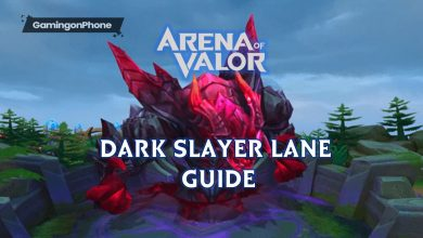 Photo of Arena of Valor Dark Slayer lane Guide