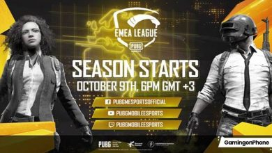 Photo of PUBG Mobile EMEA League 2020 complete updated schedule is here