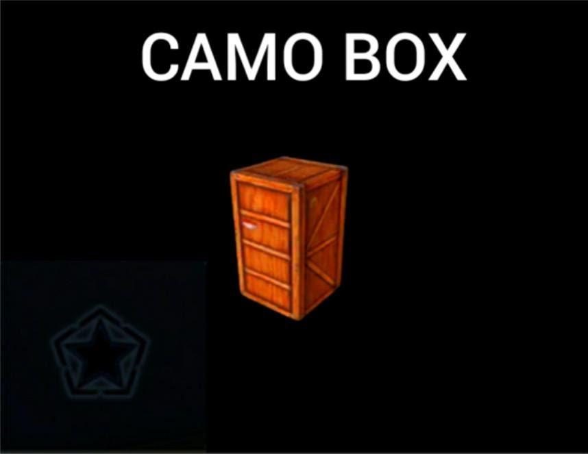 Camo Box