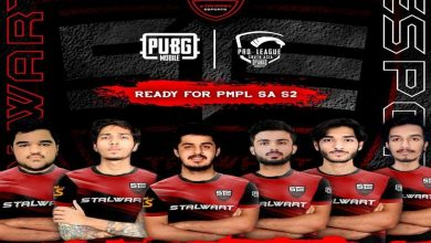 Photo of Stalwart Esports signed Pakistan based team Freestyle to participate in PMPL South Asia Season 2