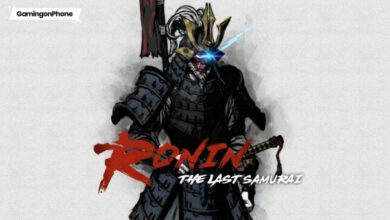 Ronin the last Samurai