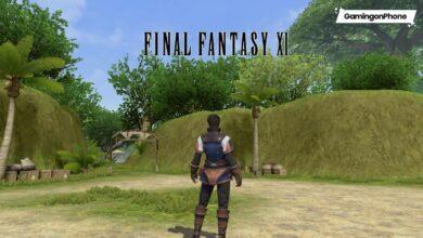 Final Fantasy XI Mobile reboot