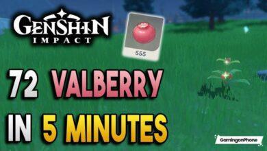 Genshin Impact Valberry