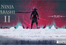 ninja arashi 2 guide