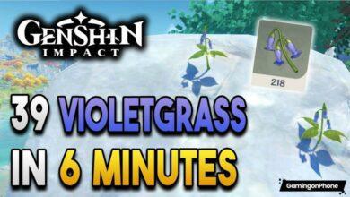 Genshin Impact Violetgrass