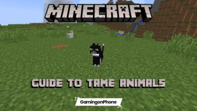 Minecraft tame animal guide
