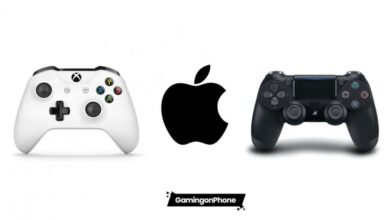 iOS Controller Support